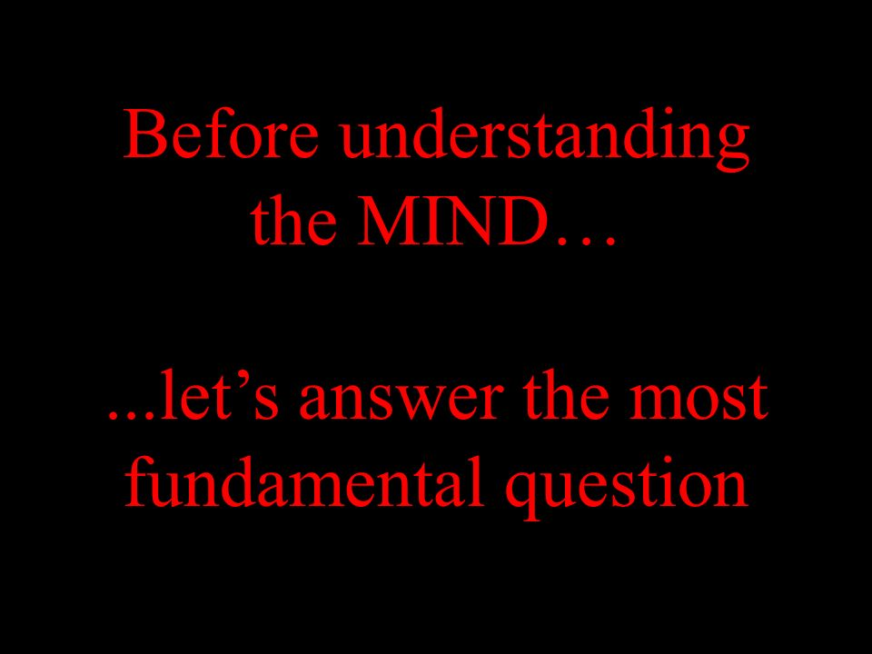 Before understanding the MIND…