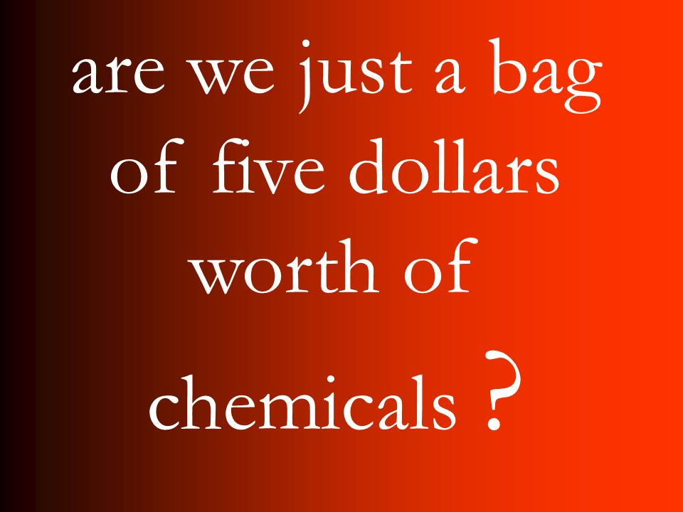 are we just a bag of five dollars worth of chemicals