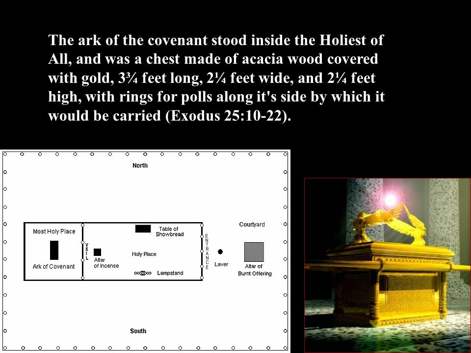The ark of the covenant stood inside the Holiest of All, and was a chest made of acacia wood covered with gold, 3¾ feet long, 2¼ feet wide, and 2¼ feet high, with rings for polls along it s side by which it would be carried (Exodus 25:10-22).