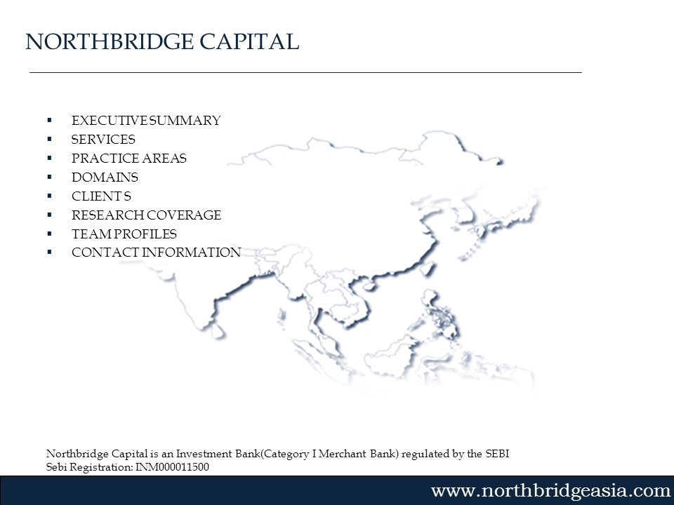 NORTHBRIDGE CAPITAL EXECUTIVE SUMMARY SERVICES PRACTICE AREAS DOMAINS