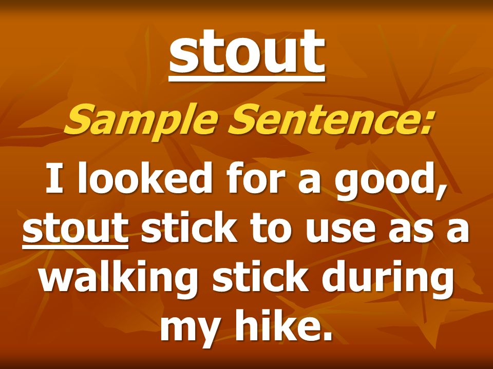 stout Sample Sentence: