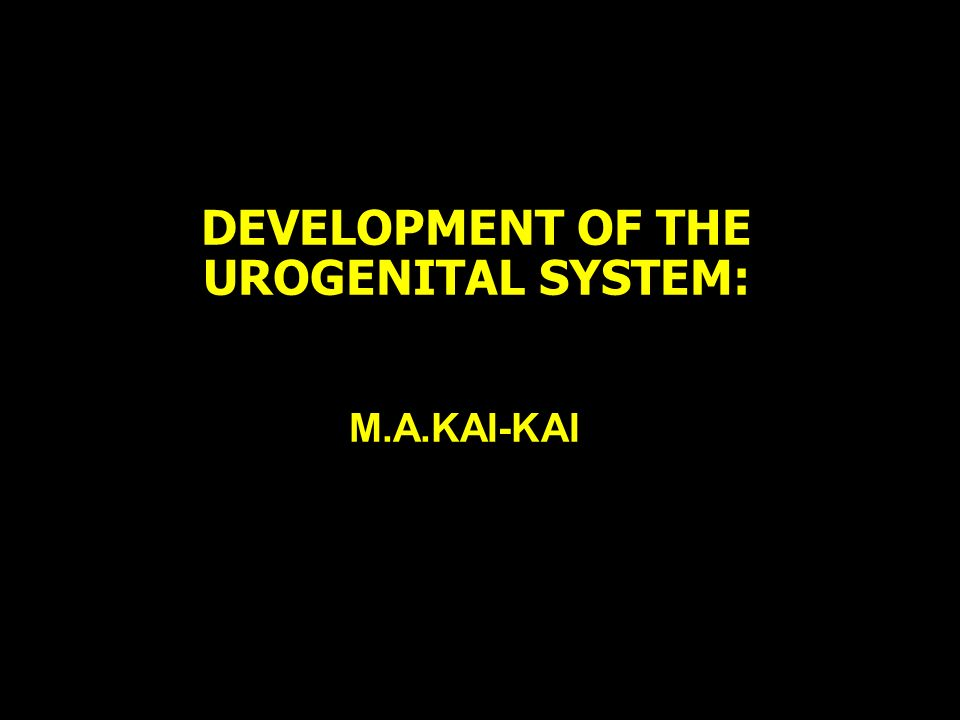 DEVELOPMENT OF THE UROGENITAL SYSTEM: