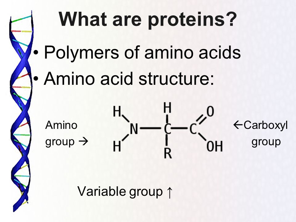 What are proteins Polymers of amino acids Amino acid structure: