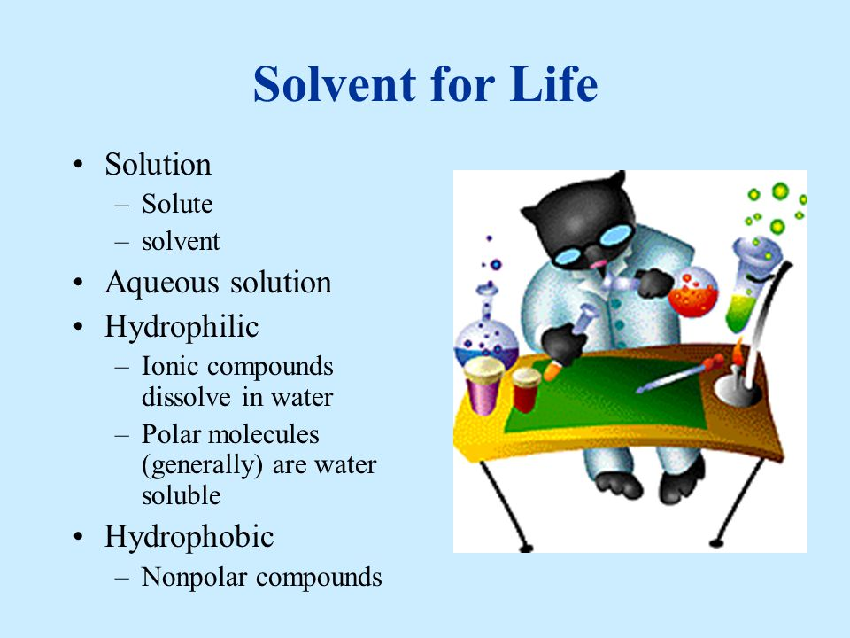 Solvent for Life Solution Aqueous solution Hydrophilic Hydrophobic