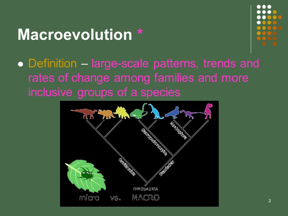 Macroevolution * Definition – large-scale patterns, trends and rates of change among families and more inclusive groups of a species.