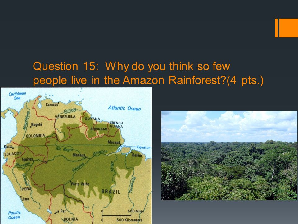 Question 15: Why do you think so few people live in the Amazon Rainforest (4 pts.)
