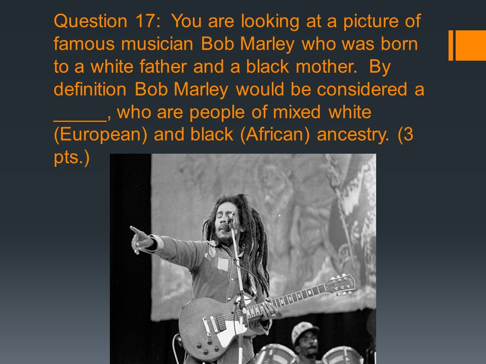 Question 17: You are looking at a picture of famous musician Bob Marley who was born to a white father and a black mother.