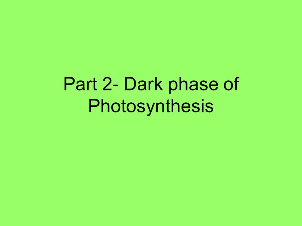 Part 2- Dark phase of Photosynthesis