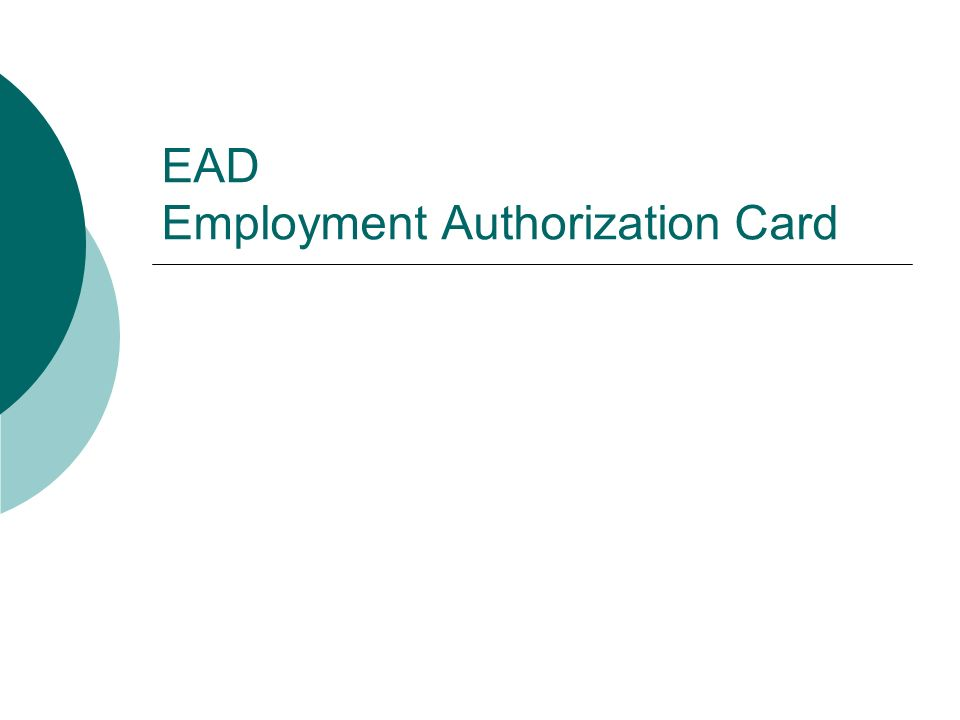 EAD Employment Authorization Card