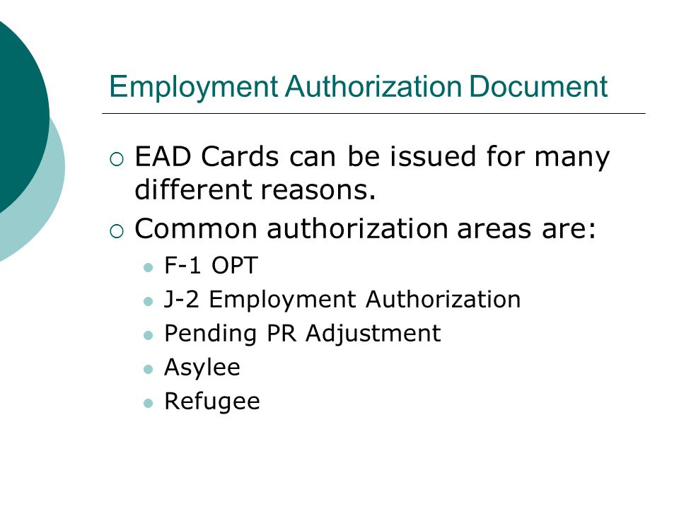 Employment Authorization Document