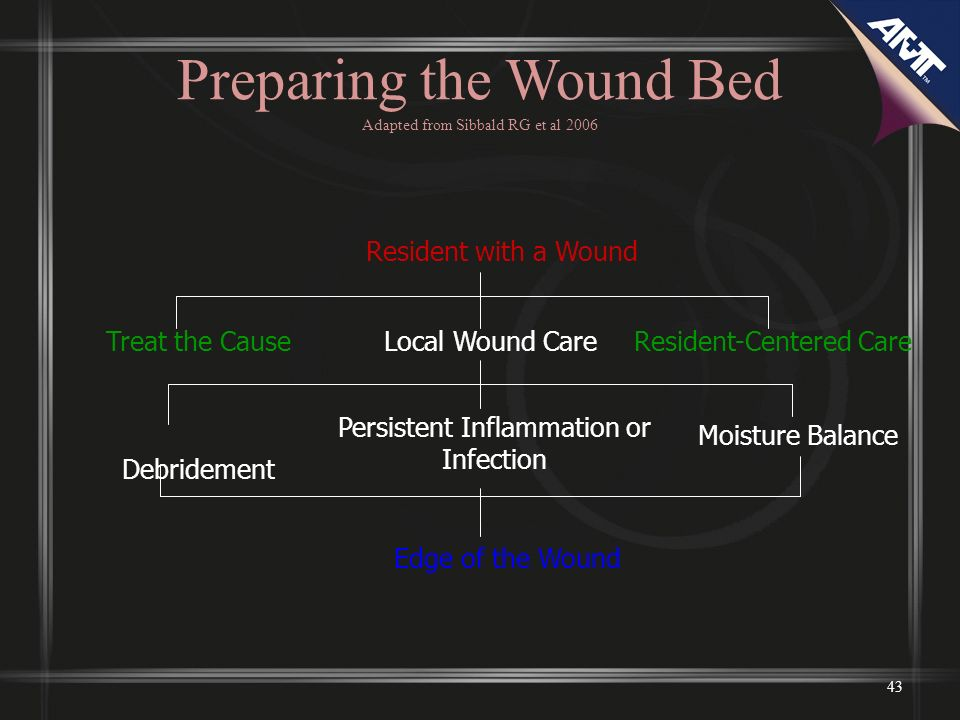 Preparing the Wound Bed Adapted from Sibbald RG et al 2006