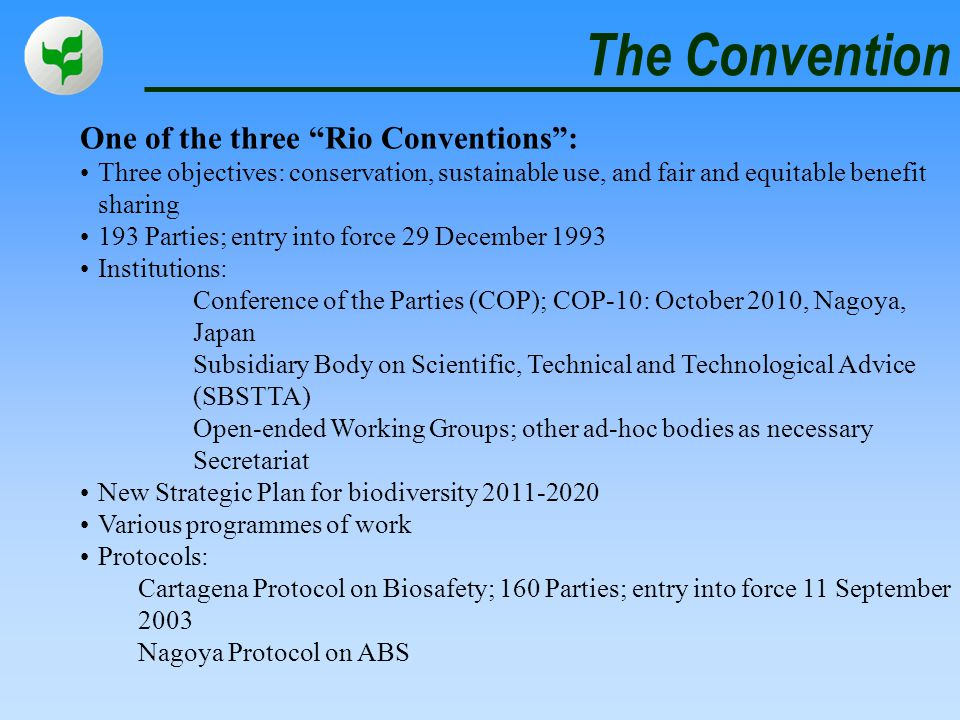 The Convention One of the three Rio Conventions :