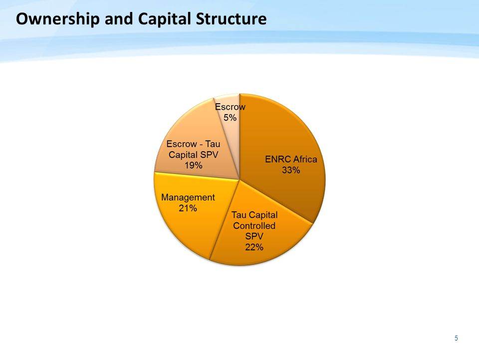 Ownership and Capital Structure