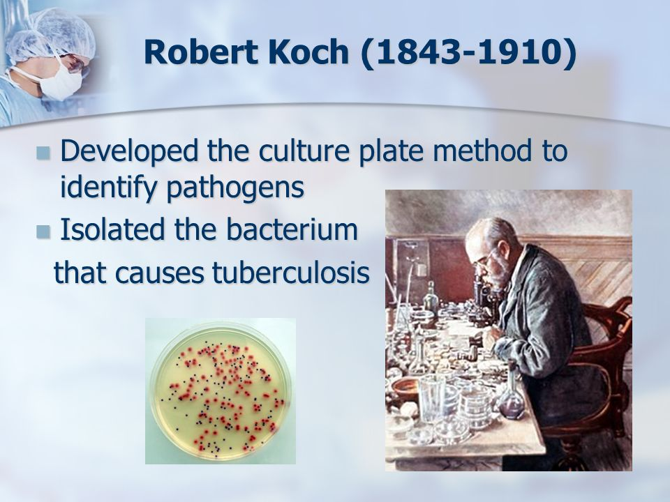 Robert Koch ( ) Developed the culture plate method to identify pathogens. Isolated the bacterium.