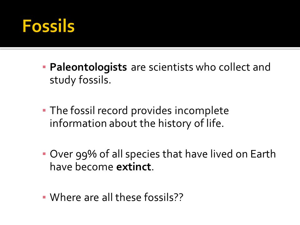 Fossils Paleontologists are scientists who collect and study fossils.