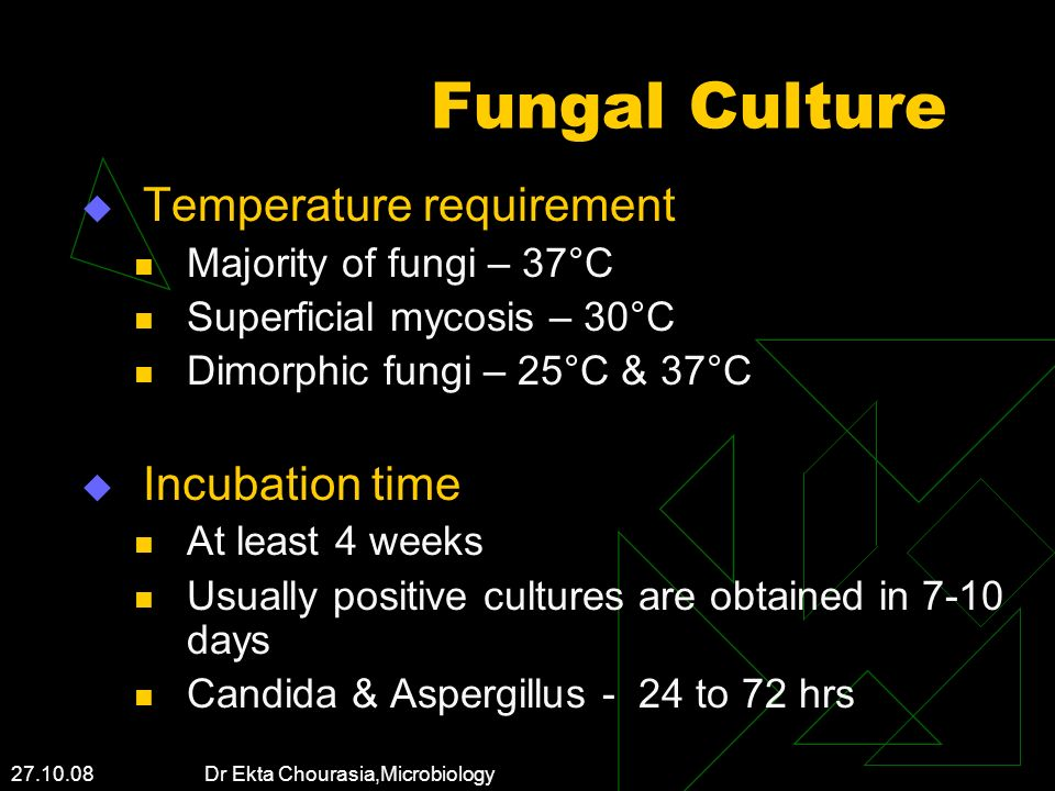 Fungal Culture Temperature requirement Incubation time