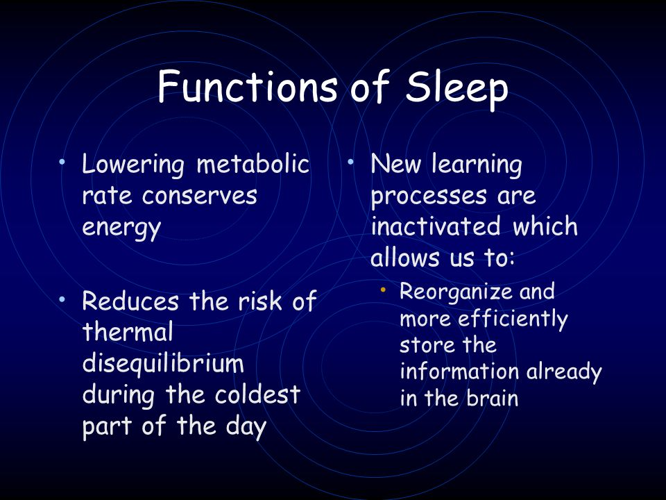 Functions of Sleep Lowering metabolic rate conserves energy