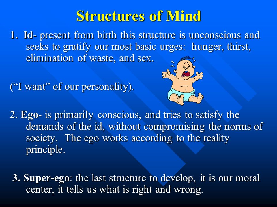 Structures of Mind