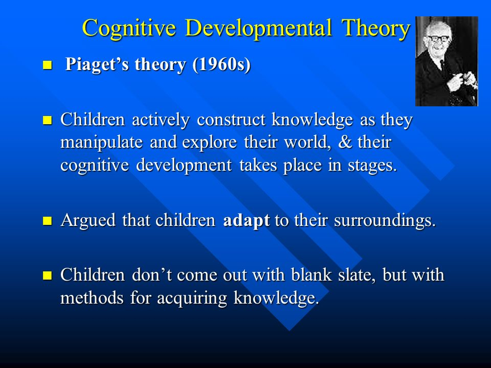 Cognitive Developmental Theory