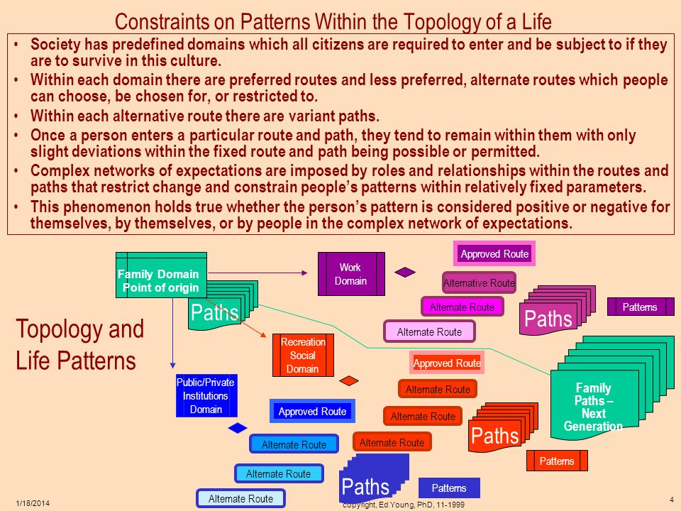 Constraints on Patterns Within the Topology of a Life