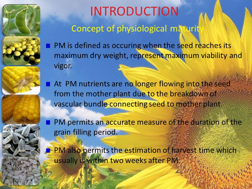 INTRODUCTION Concept of physiological maturity