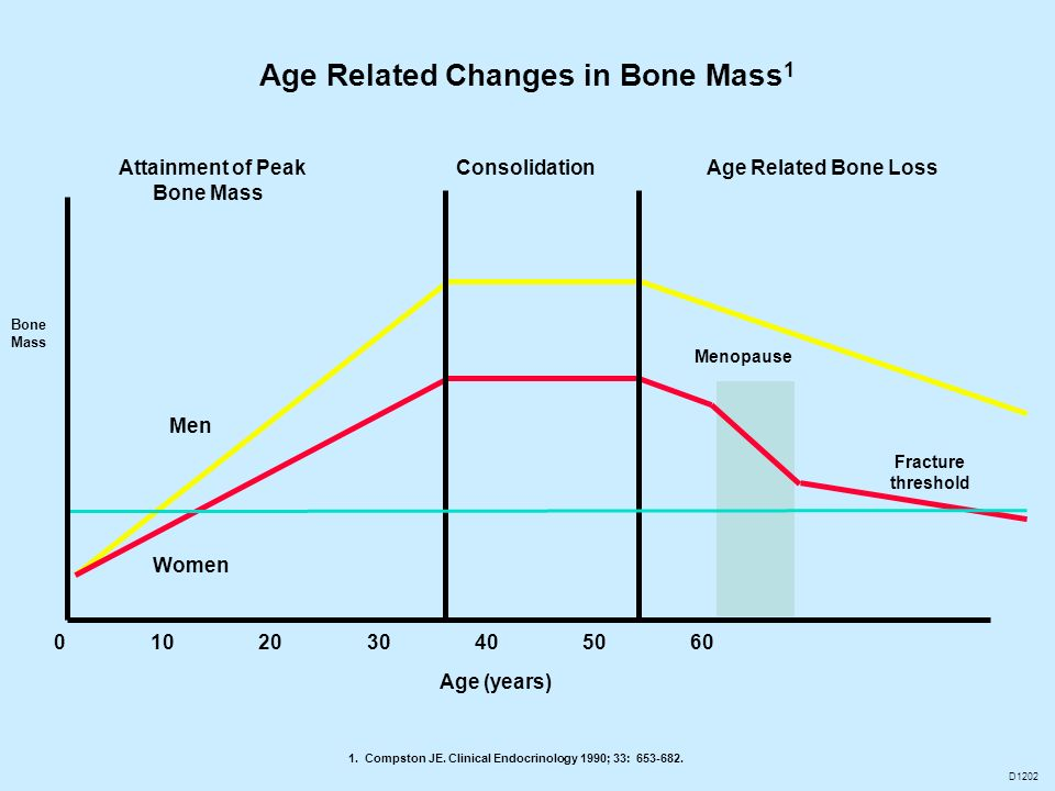 Age Related Changes in Bone Mass1