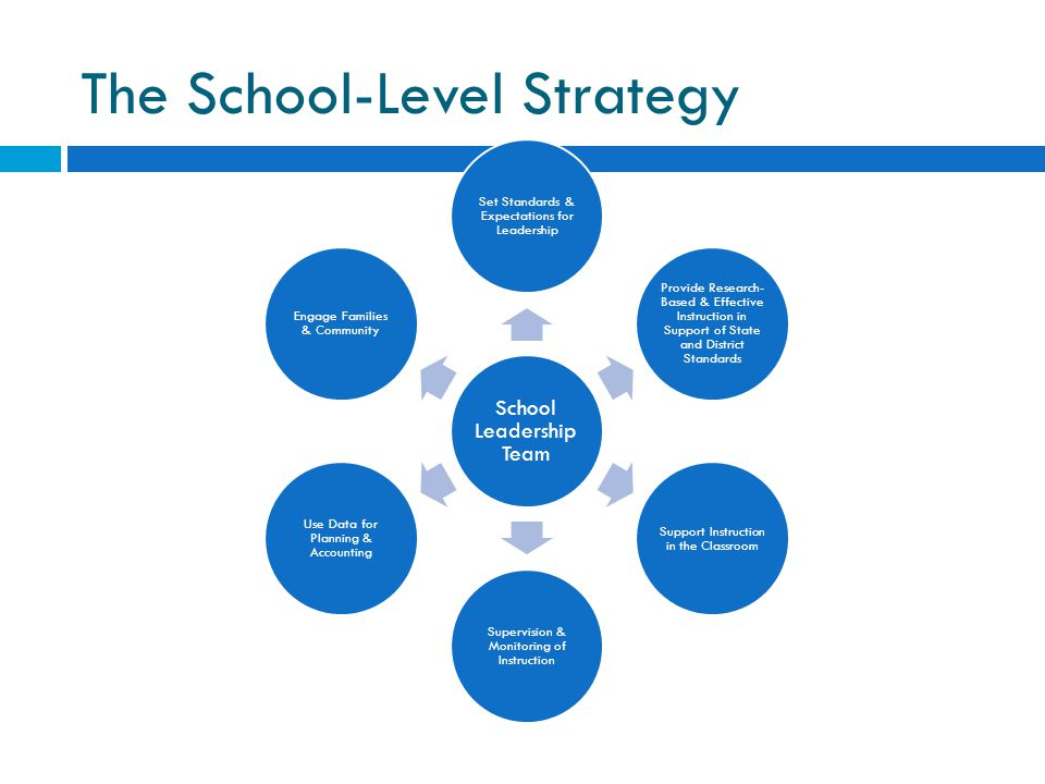 The School-Level Strategy