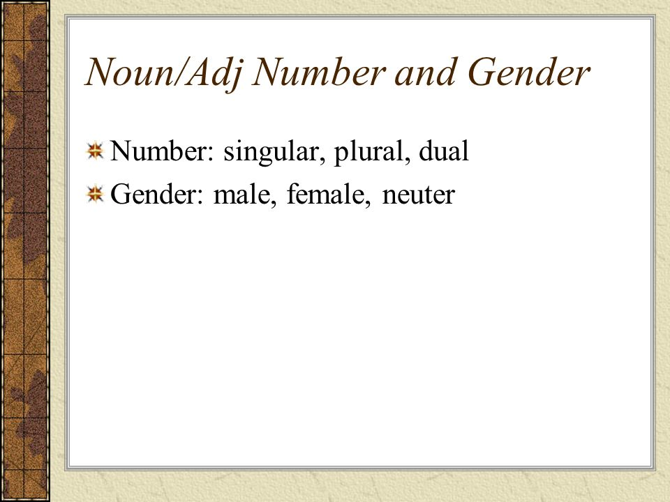 Noun/Adj Number and Gender