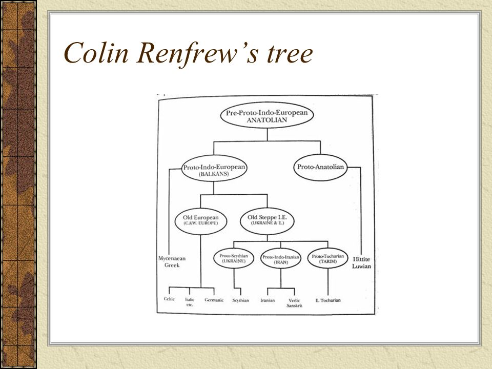 Colin Renfrew's tree