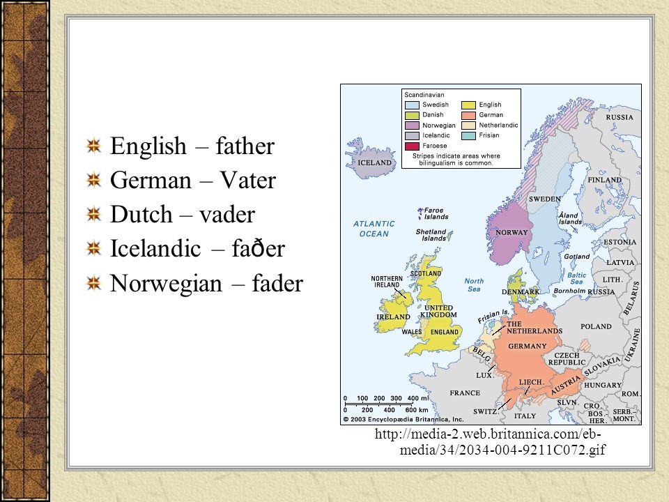 English – father German – Vater Dutch – vader Icelandic – faðer