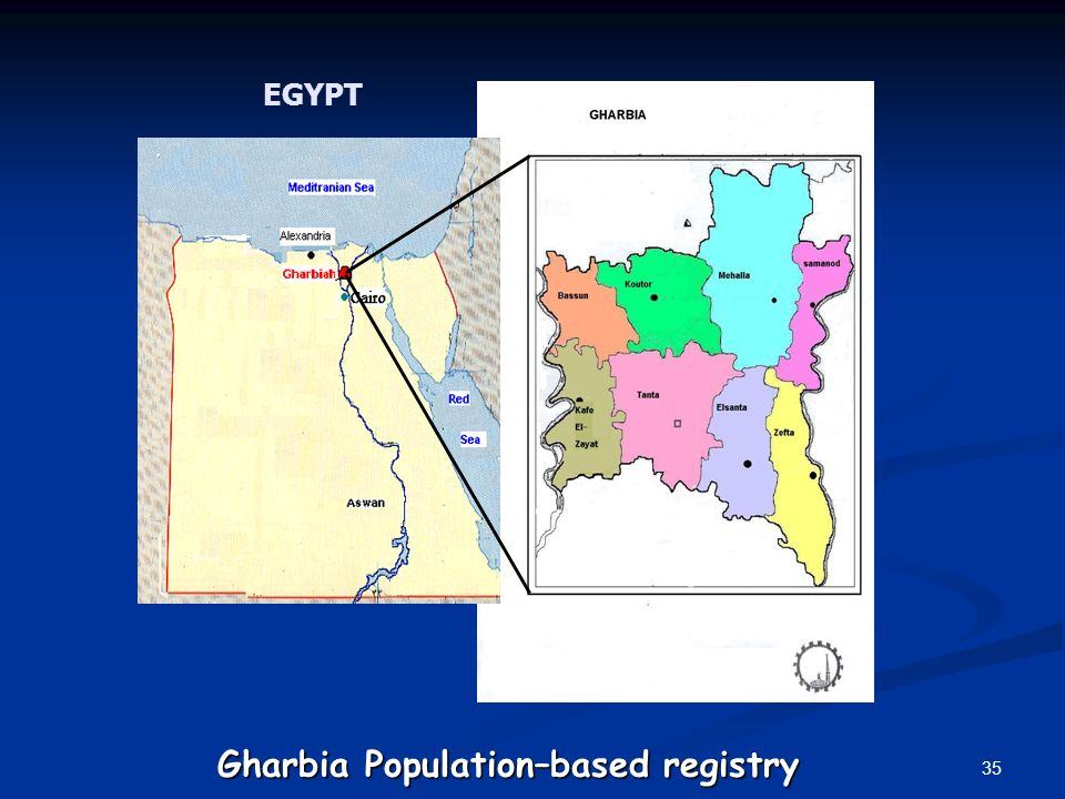 Gharbia Population–based registry