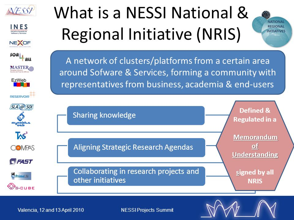 What is a NESSI National & Regional Initiative (NRIS)