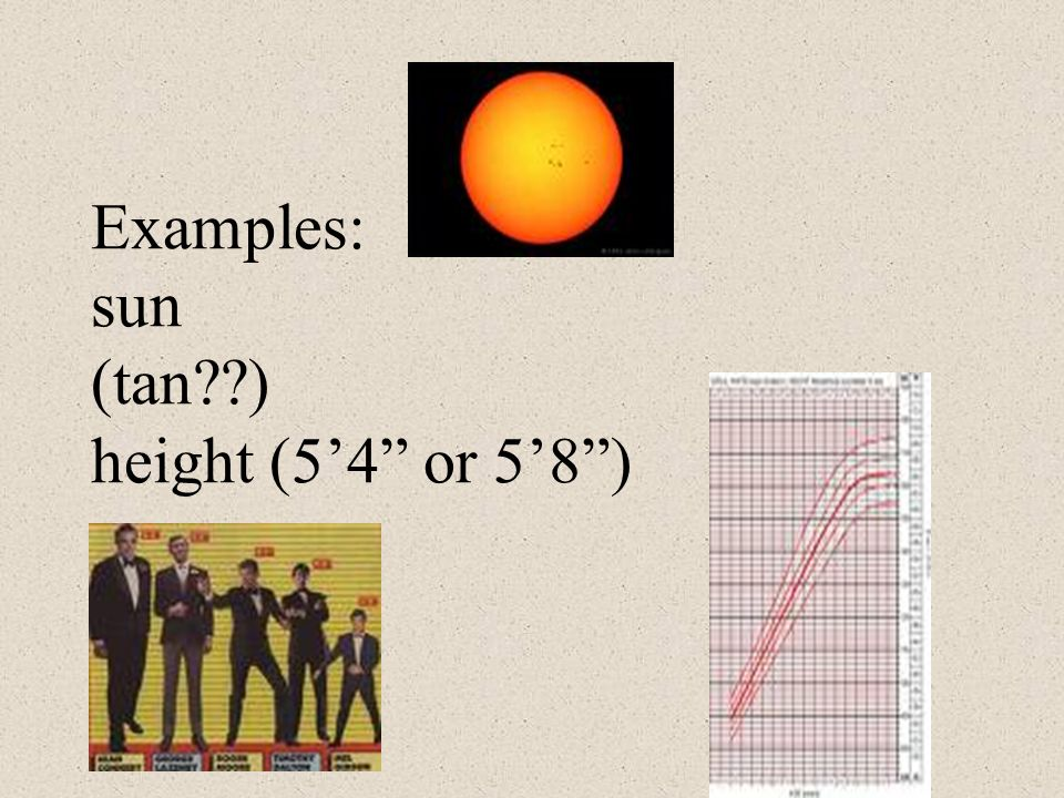 Examples: sun (tan ) height (5'4 or 5'8 )