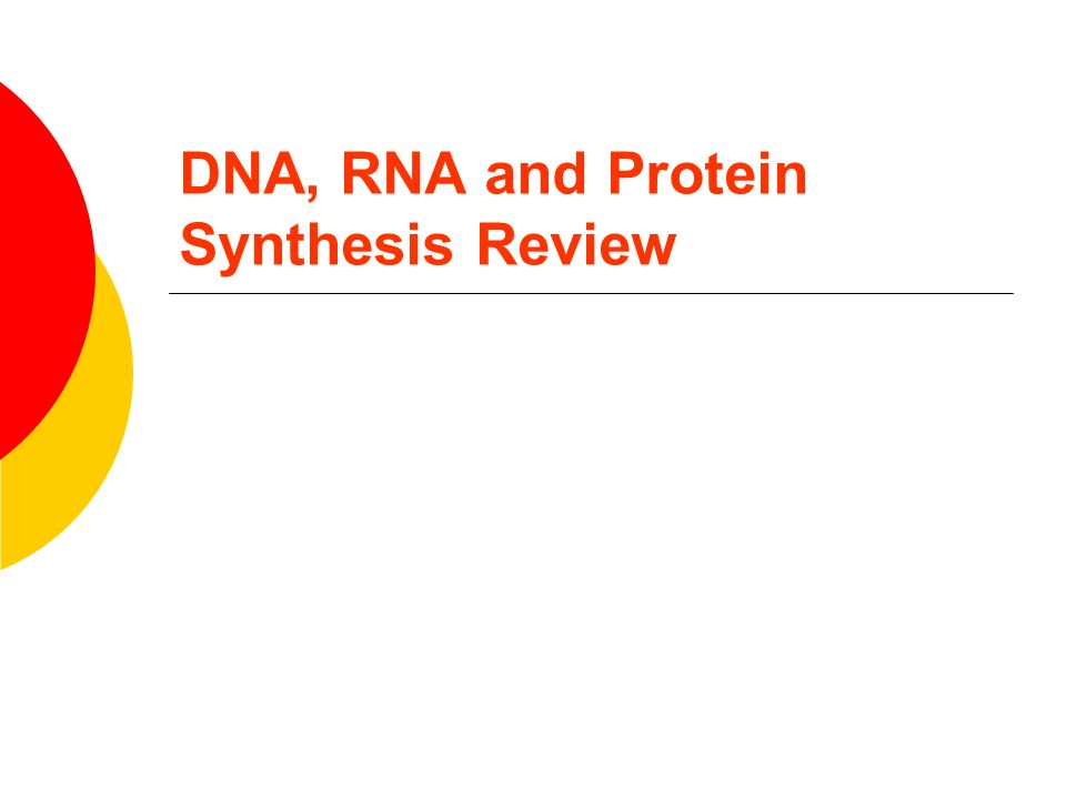 DNA, RNA and Protein Synthesis Review