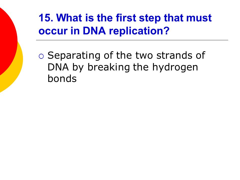 15. What is the first step that must occur in DNA replication