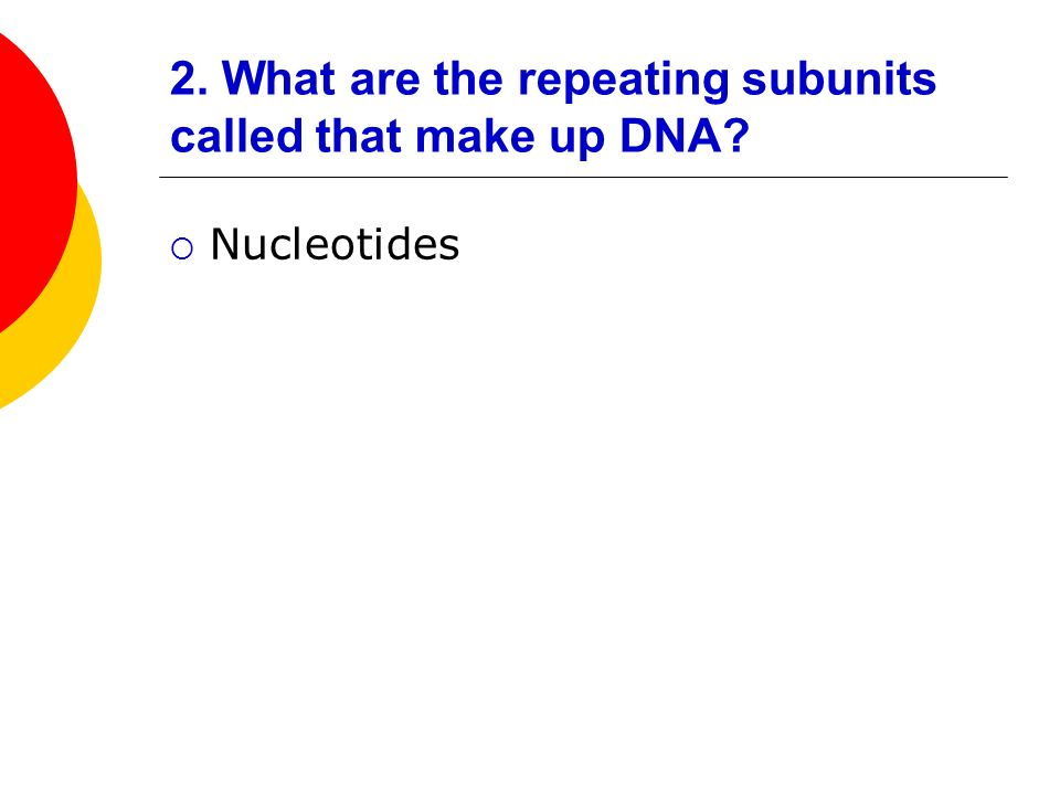 2. What are the repeating subunits called that make up DNA