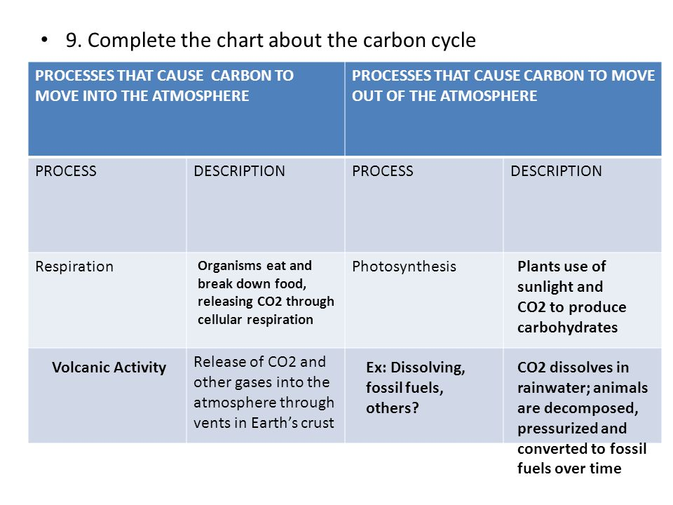 9. Complete the chart about the carbon cycle