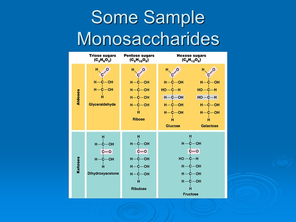 Some Sample Monosaccharides