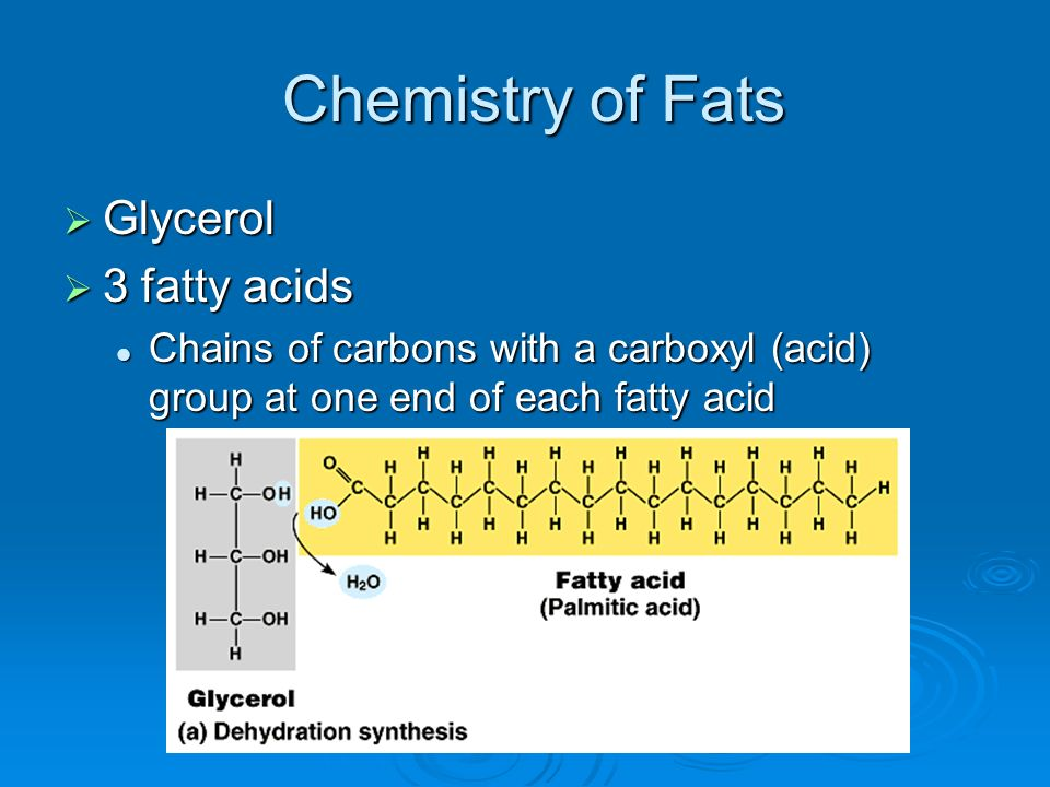 Chemistry of Fats Glycerol 3 fatty acids