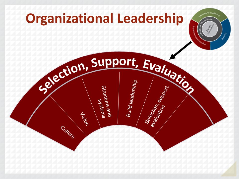 Organizational Leadership Selection, Support, Evaluation