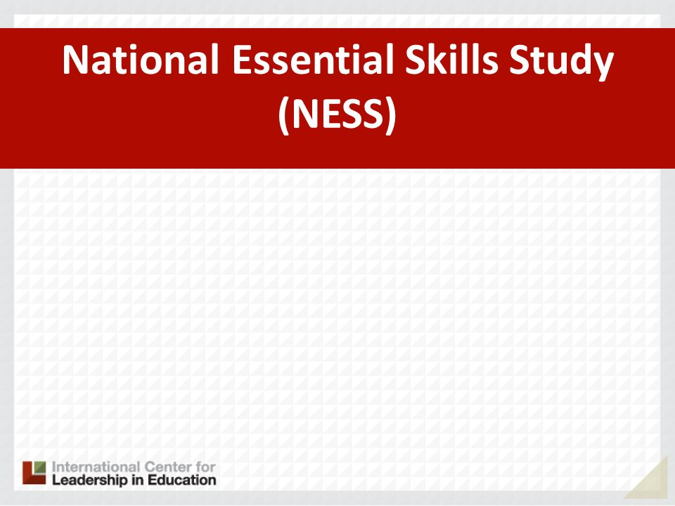 National Essential Skills Study (NESS)