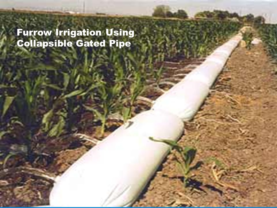 Furrow Irrigation Using Collapsible Gated Pipe