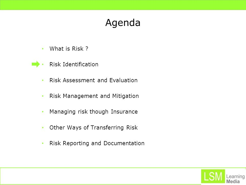 Agenda What is Risk Risk Identification