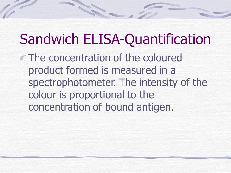 Sandwich ELISA-Quantification