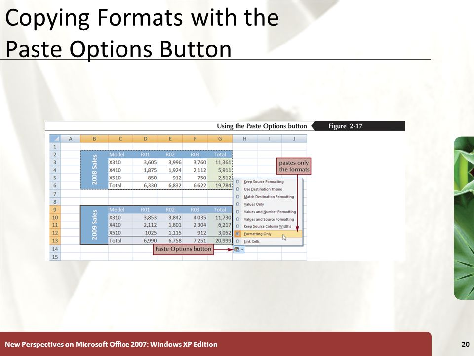Copying Formats with the Paste Options Button