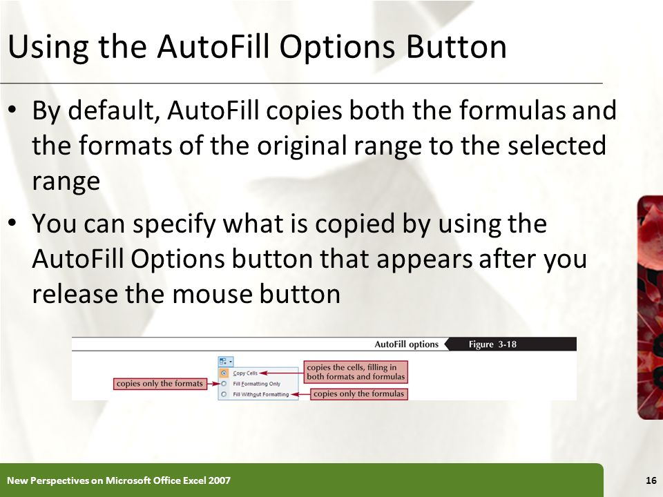 Using the AutoFill Options Button