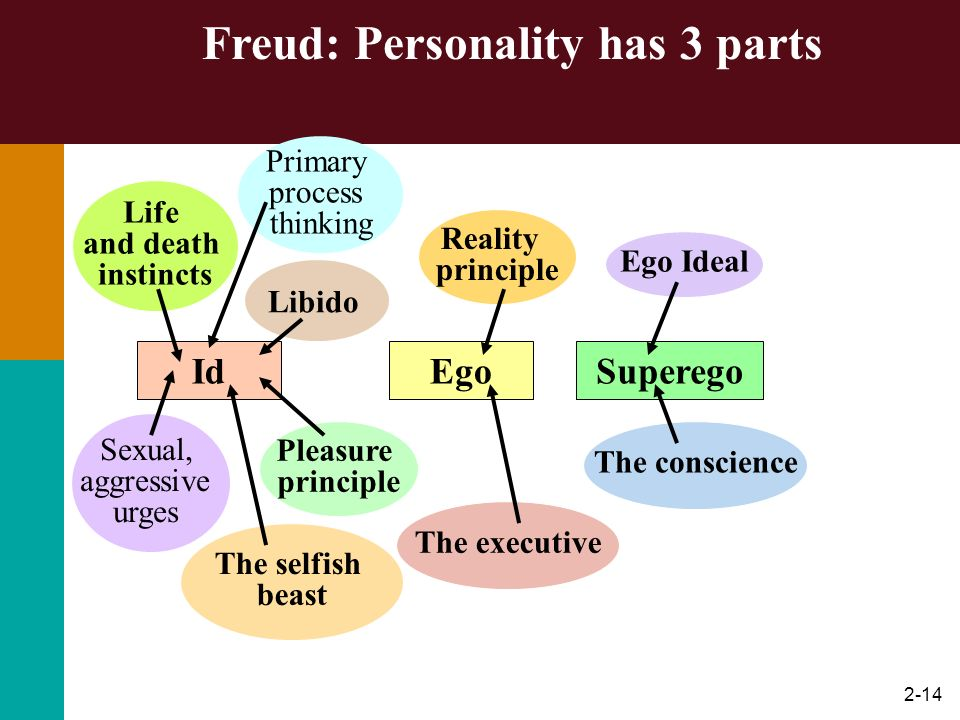 Freud: Personality has 3 parts