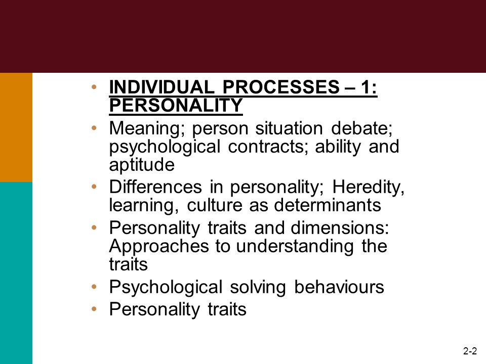 INDIVIDUAL PROCESSES – 1: PERSONALITY