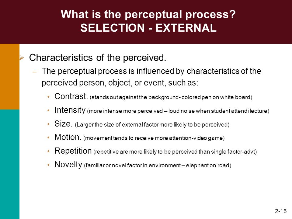 What is the perceptual process SELECTION - EXTERNAL
