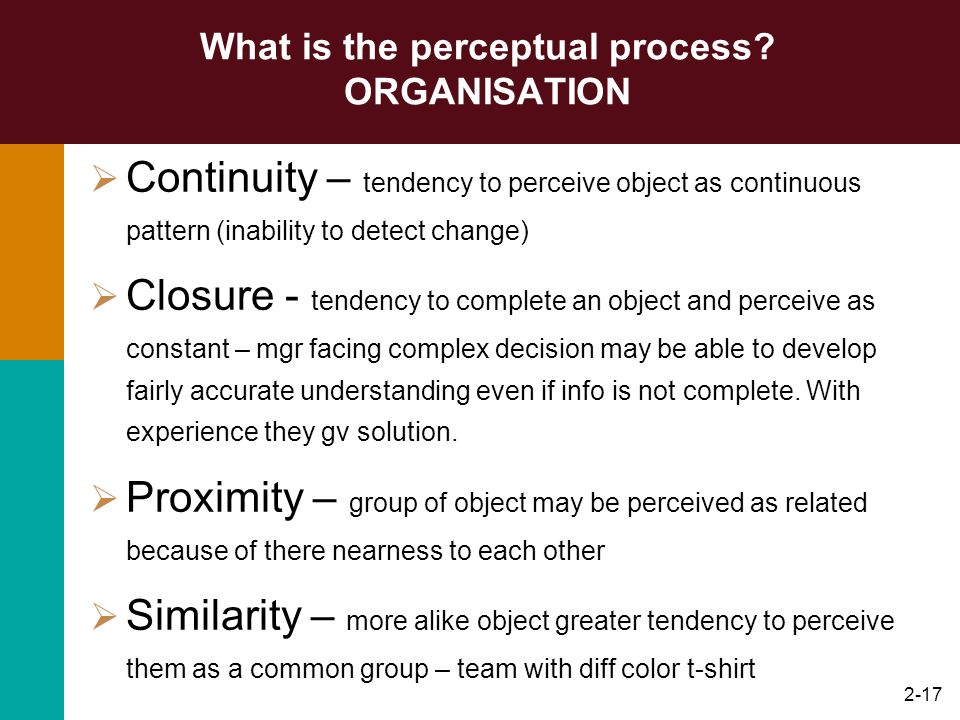 What is the perceptual process ORGANISATION